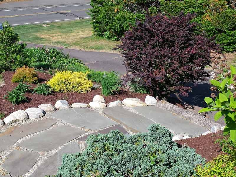 Walkway & Plantings - Cindy S.