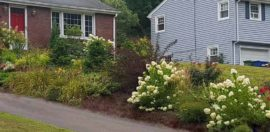 It's All in the Details - Problem Solving by Encore Landscaping - After