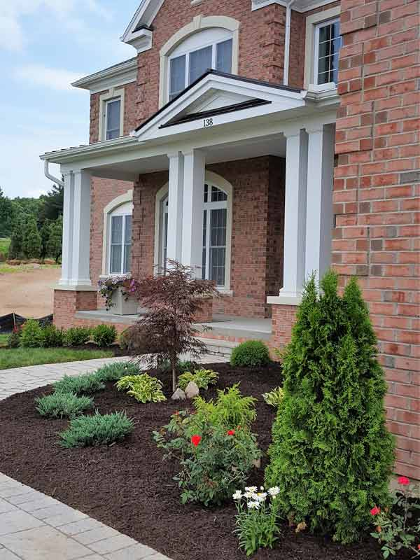 Front Plantings – Jenkins