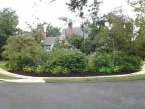 Encore Landscaping - curb appeal